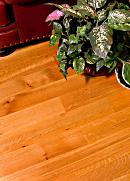 Beautiful Discounted Hardwood Flooring
